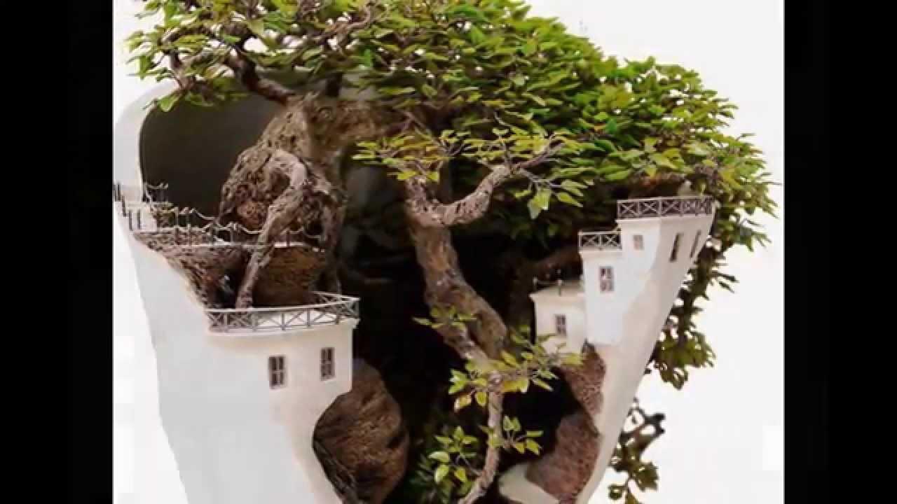 世界中で話題!盆栽アート